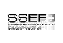 Laboratorio SSEF